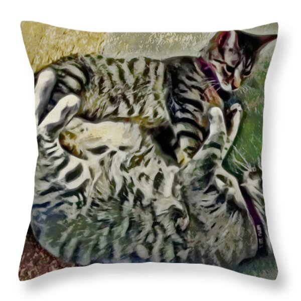 Playtime Throw Pillow by David G Paul