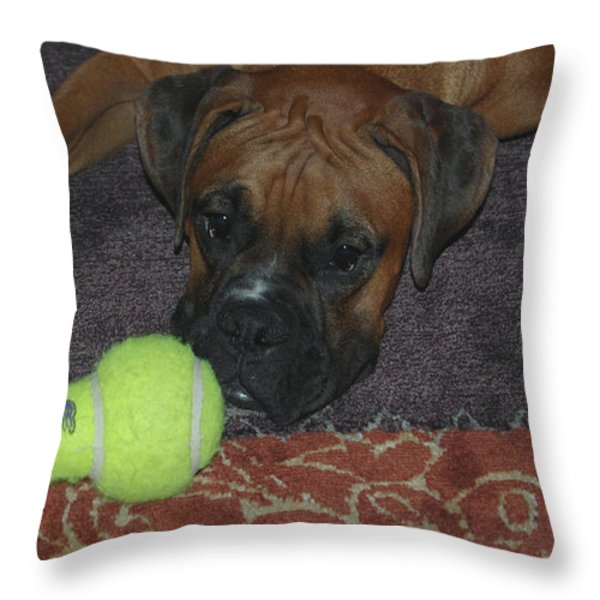 Please Play With Me Throw Pillow by DigiArt Diaries by Vicky B Fuller