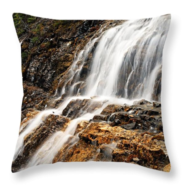 Point Lace Falls 1 Throw Pillow by Larry Ricker