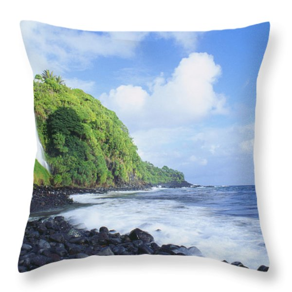 Pokupupu Point Throw Pillow by Peter French - Printscapes