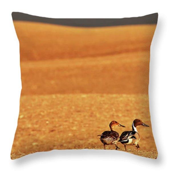Prairie Storm And Ducks Canada Throw Pillow by Mark Duffy