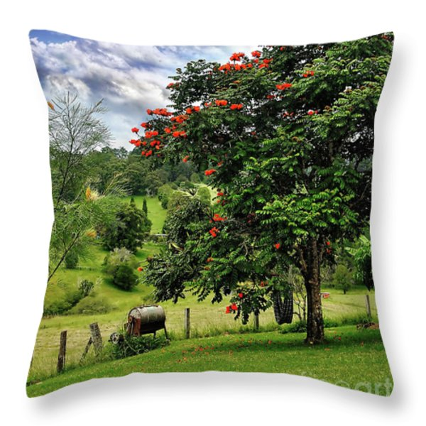 Pretty Countryside Throw Pillow by Kaye Menner