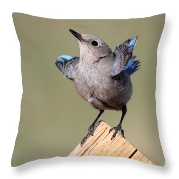 Pretty Pose Throw Pillow by Shane Bechler