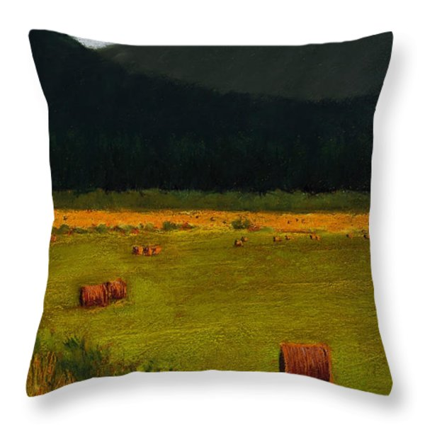 Priest Lake Hay Bales Throw Pillow by David Patterson