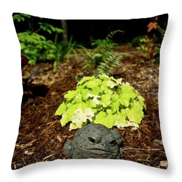 Private Garden Go Away Throw Pillow by Douglas Barnett