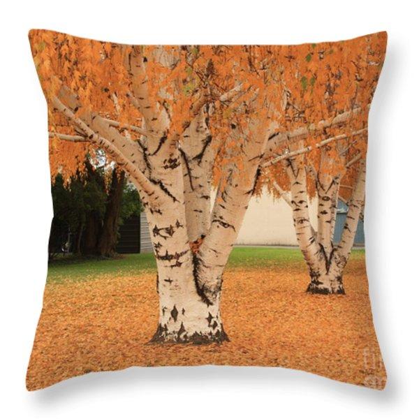 Prosser - Autumn Birch Trees Throw Pillow by Carol Groenen