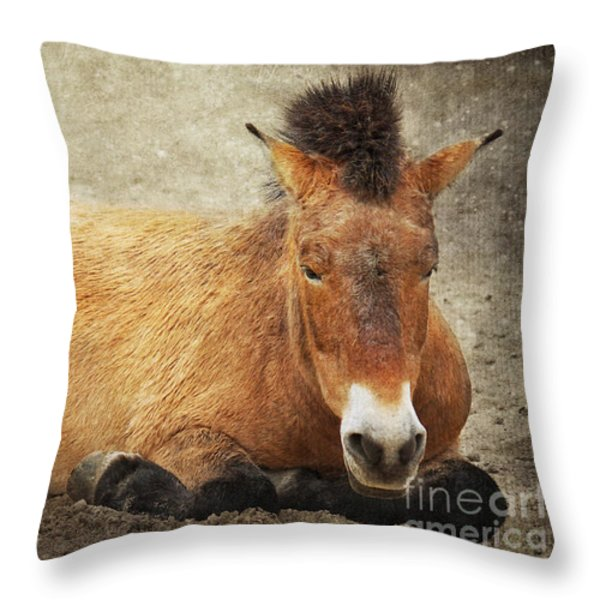 Przewalski-horse Throw Pillow by Angela Doelling AD DESIGN Photo and PhotoArt