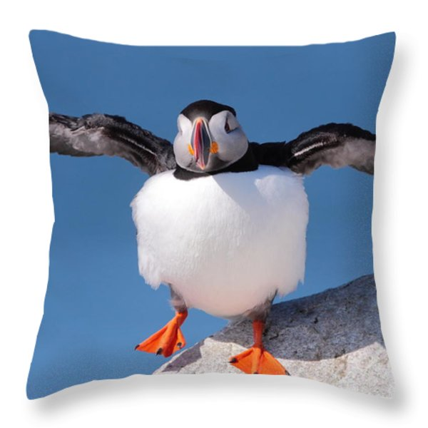 Puffin Dance Throw Pillow by Bruce J Robinson