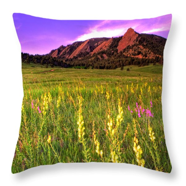 Purple Skies and Wildflowers Throw Pillow by Scott Mahon