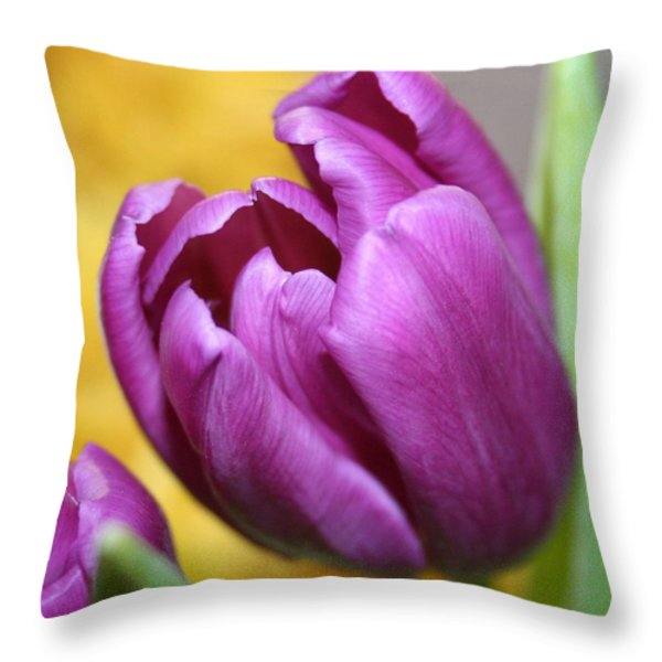 Purple Spring Throw Pillow by Linda Sannuti