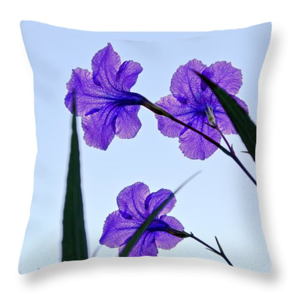 Purple Trio Throw Pillow by Christopher Holmes