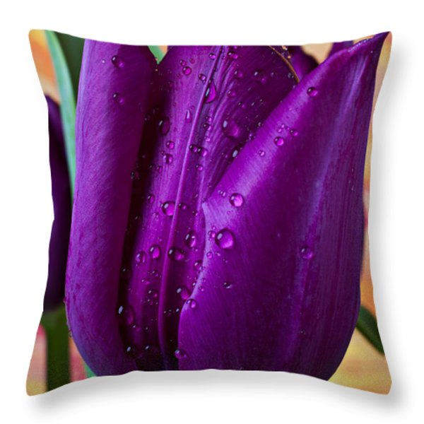 Purple Tulip Throw Pillow by Garry Gay