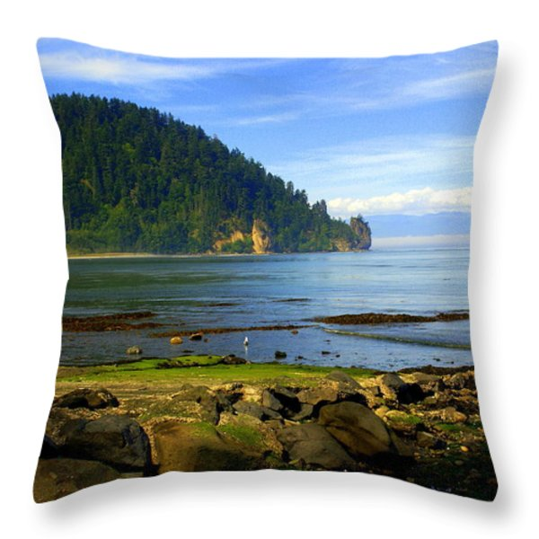 Quiet Bay Throw Pillow by Marty Koch