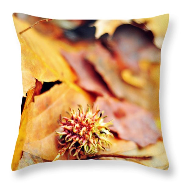 Rainbow In A Sigh Throw Pillow by Rebecca Sherman