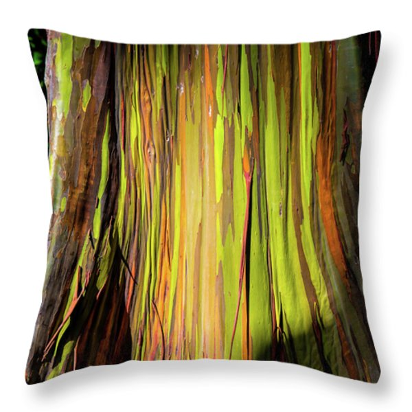 Rainbow Tree Throw Pillow by Jon Burch Photography