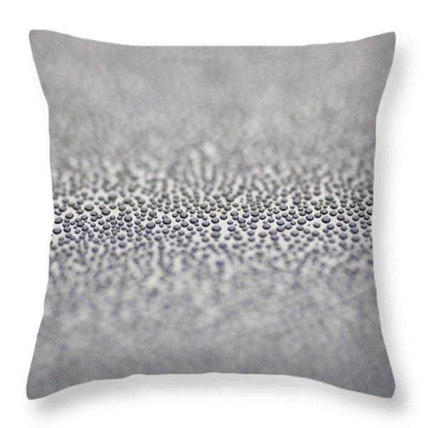 Raindrops Throw Pillow by Frank Tschakert