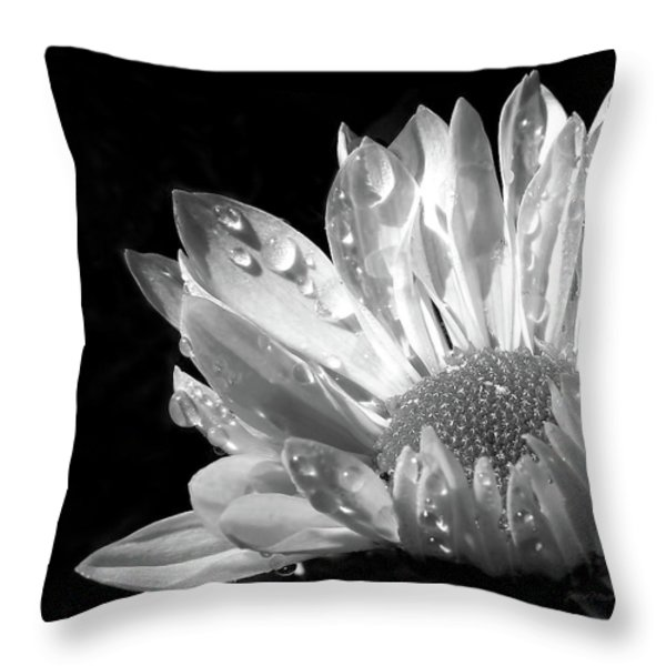 Raindrops On Daisy Black And White Throw Pillow by Jennie Marie Schell