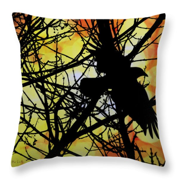 Raven Throw Pillow by Bob Orsillo