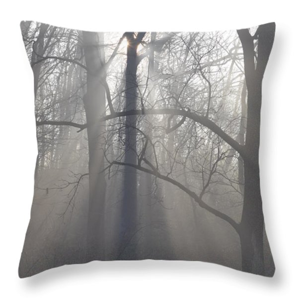Rays of Hope Throw Pillow by Bill Cannon