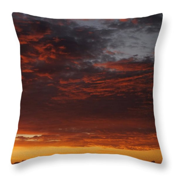 Reach for the Sky 12 Throw Pillow by Mike McGlothlen