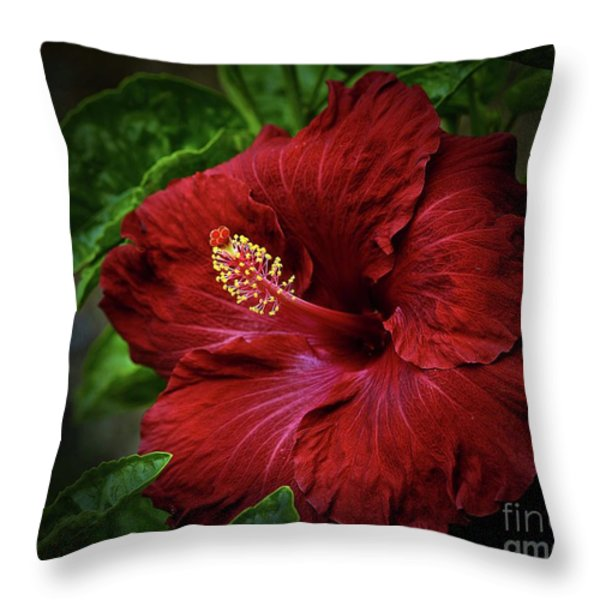 Reaching Out Throw Pillow by Arnie Goldstein