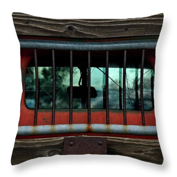 Rear Window Throw Pillow by Murray Bloom