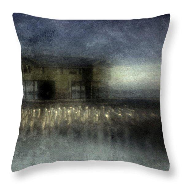 Recurrent Dream Throw Pillow by Andrew Paranavitana