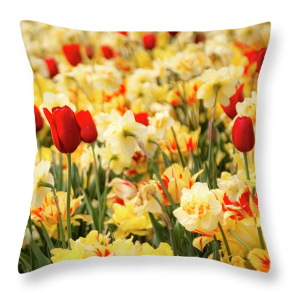 Red And Yellow Throw Pillow by Tamyra Ayles