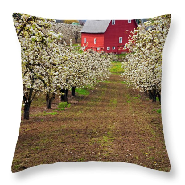 Red Barn Avenue Throw Pillow by Mike  Dawson