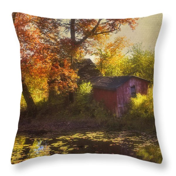 Red Barn In Autumn Throw Pillow by Joann Vitali