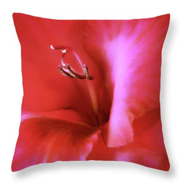 Red Dragon Gladiola Flower Throw Pillow by Jennie Marie Schell