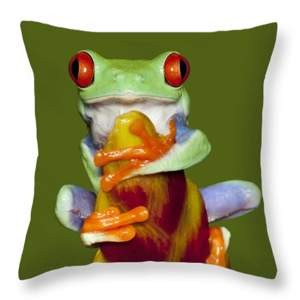 Red Eyed Delight Throw Pillow by Janet Fikar