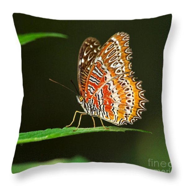 Red Lacewing Butterfly Throw Pillow by Louise Heusinkveld