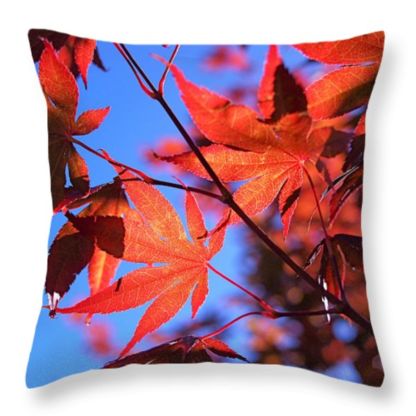 Red Maple Throw Pillow by Rona Black