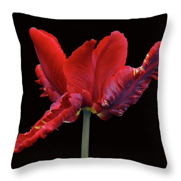 Red Parrot Tulip Throw Pillow by Sandy Keeton