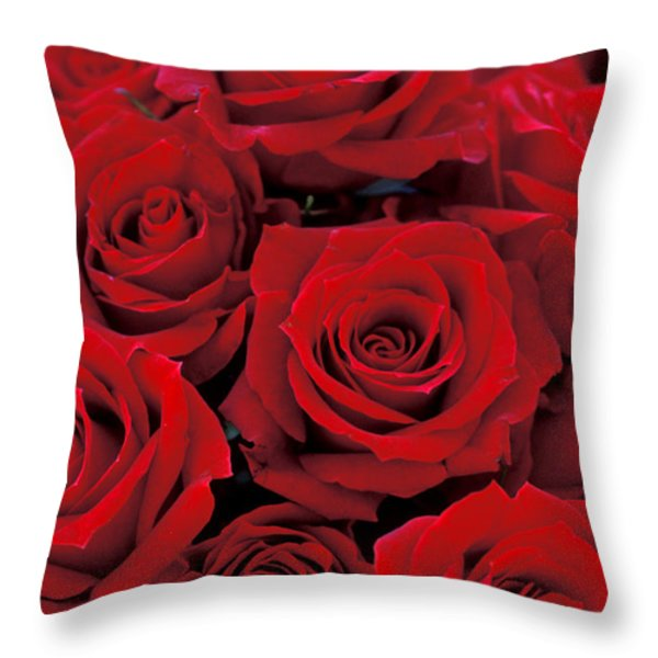 Red Rose Bouquet Throw Pillow by Kathy Yates