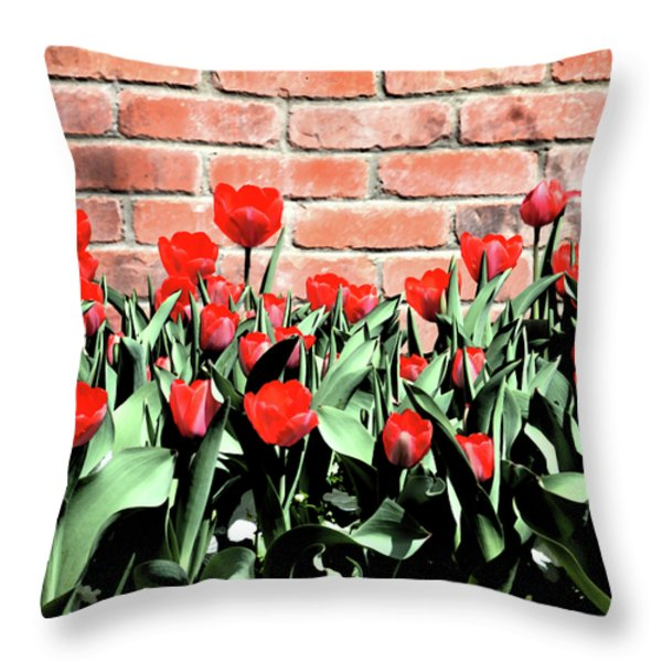 Red Spring Tulips 2 Throw Pillow by Angelina Vick