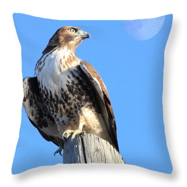 Red Tailed Hawk and Moon Throw Pillow by Wingsdomain Art and Photography