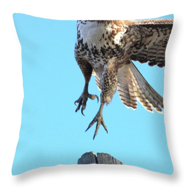 Red Tailed Hawk Taking Off . 40d10170 Throw Pillow by Wingsdomain Art and Photography