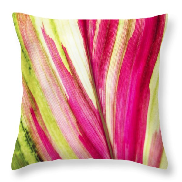 Red Ti Leaf Throw Pillow by Brandon Tabiolo - Printscapes