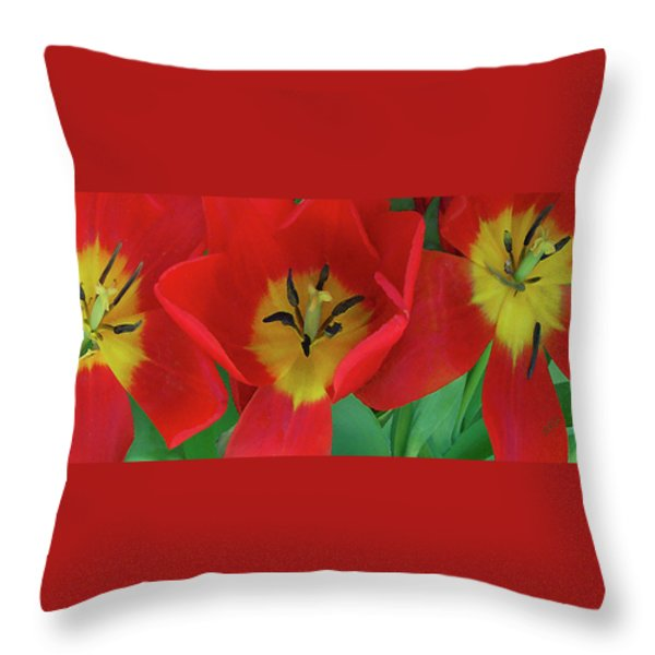 Red Tulip Trio Throw Pillow by Ben and Raisa Gertsberg