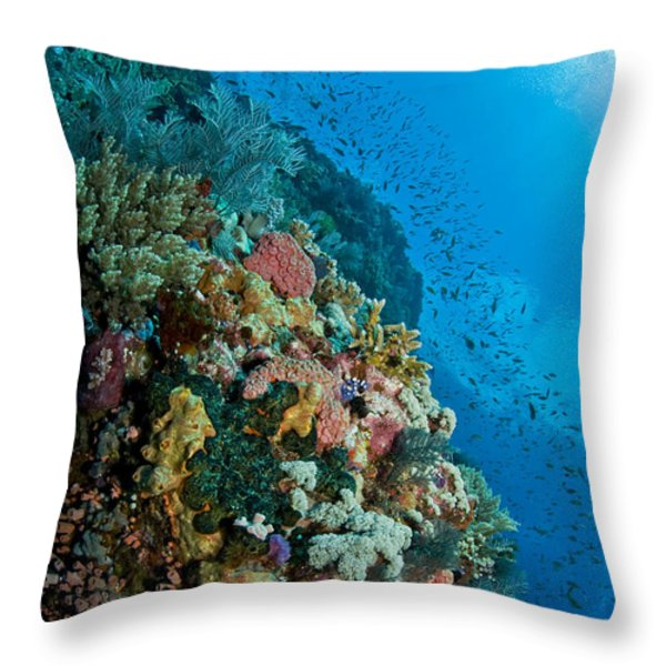 Reef Scene With Corals And Fish Throw Pillow by Mathieu Meur