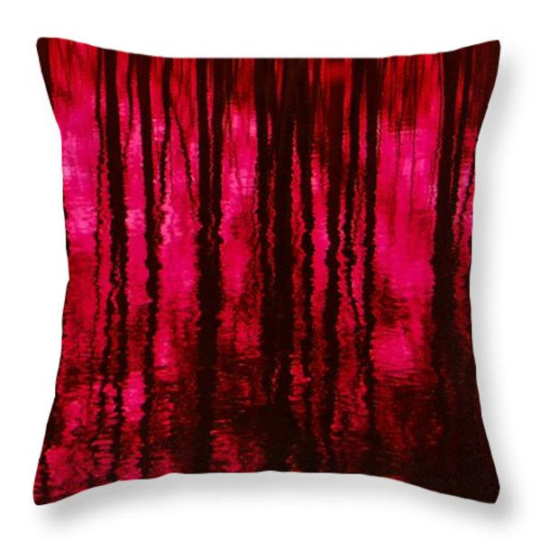Reflections Throw Pillow by David Lane