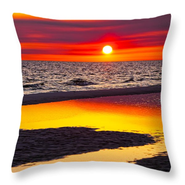 Reflections Throw Pillow by Janet Fikar