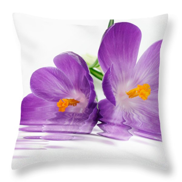Reflections of Beauty Throw Pillow by Cheryl Young