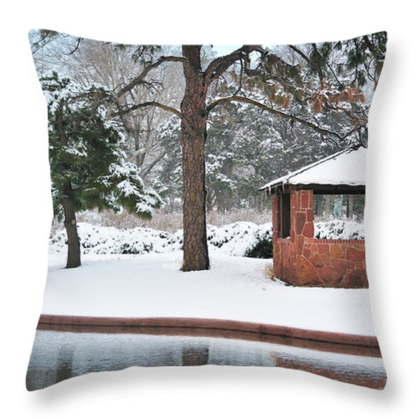 Reflections Of Winter Throw Pillow by Betty LaRue