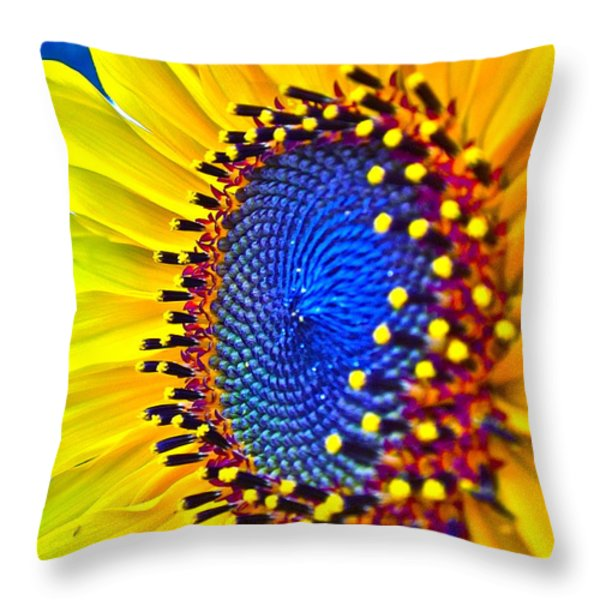 Rejoice Throw Pillow by Gwyn Newcombe