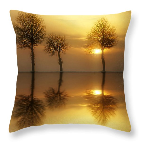 Remains of the Day Throw Pillow by Photodream Art