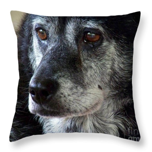 Reminiscing  Throw Pillow by Jai Johnson