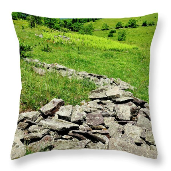 Remnants Of Camp Allegheny Throw Pillow by Thomas R Fletcher